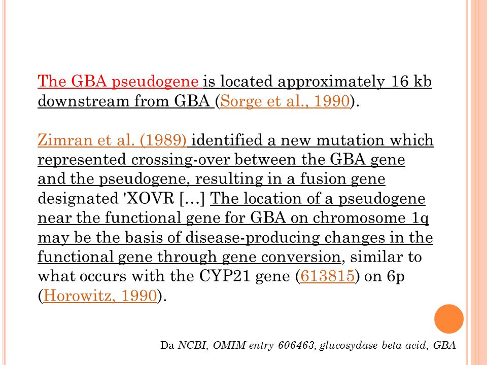 The GBA pseudogene is located approximately 16 kb downstream from GBA (Sorge et al., 1990). Zimran et al. (1989) identified a new mutation which represented crossing-over between the GBA gene and the pseudogene, resulting in a fusion gene designated XOVR […] The location of a pseudogene near the functional gene for GBA on chromosome 1q may be the basis of disease-producing changes in the functional gene through gene conversion, similar to what occurs with the CYP21 gene (613815) on 6p (Horowitz, 1990).